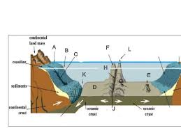 ocean floor topography c1w18 classical conversations pinterest