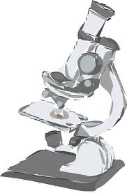 free stock photo of microscope drawing vector clipart public