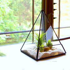 online buy wholesale dodecahedron terrarium from china