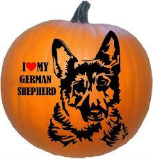 i my german shepherd