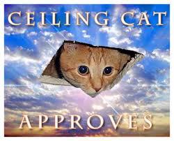 Ceiling Cat Meme - image 16228 ceilings and meme