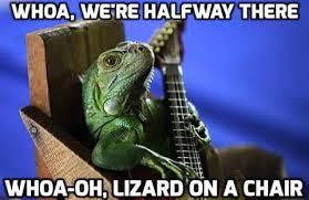 Bon Jovi Meme - bon jovi meme by bvbcat memedroid