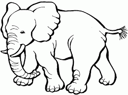 coloring homely ideas printable elephant coloring pages cute