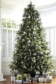best christmas trees best christmas trees 2017 movesapp co