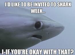 Shy Meme - really funny memes the shy shark