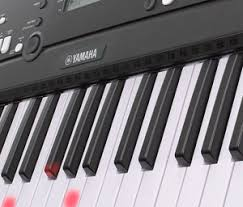 yamaha keyboard lighted keys amazon com yamaha ez 220 portable keyboard with lighted keys power