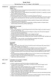 resume templates word accountant general kerala pensioners portal sales rep resume sles velvet jobs