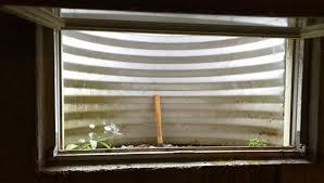 prevent dead animals in basement window wells home improvement