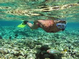 Ohio snorkeling images Kayaking and snorkeling in maui is the best picture of maui jpg