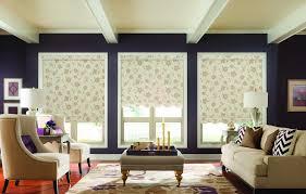 Decorative Roller Window Shades Roller Shades Gallery
