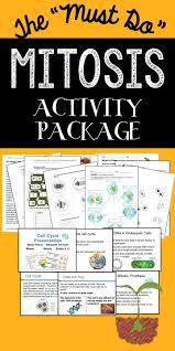 25 best meiosis activity ideas on pinterest mitosis cell cycle