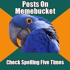 Meme Bucket - parrot memes archives az meme funny memes funny pictures