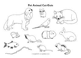 pet animals primary teaching resources and printables sparklebox