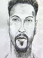 ariel castro kidnappings wikipedia