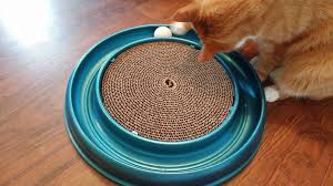 Cat Scratcher Replacement Pads Coastal Pet Products Canadian Mom Reviews