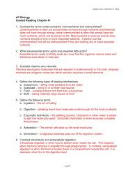 ch 41 guided reading key 1 digestion human digestive system