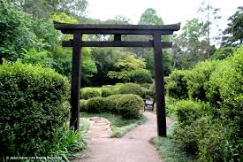 design garden tori gate japanese garden makaranga carolbaldwin