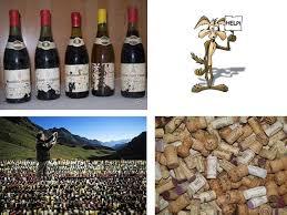 chambrer un vin douzou tchè oeno ienvenue on commence toujours par un mini