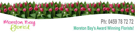 native plants brisbane moreton bay florist native u0026 wildflower bouquets north brisbane