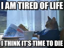 Tired Cat Meme - i am tired of life one percent cat meme on memegen