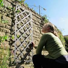 Metal Garden Trellis Uk Garden Wall Trellis Panels