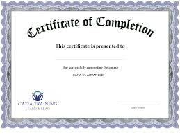Free Online Certificate Template 13 Certificate Of Completion Templates Excel Pdf Formats
