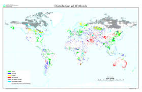 Germany On A World Map by The Wonder Of Wetlands Wwf