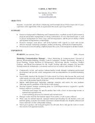 project management resume pdf sample resume construction assistant project manager project