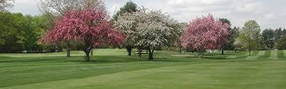 golf weston golf club