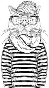 coloring books cat lovers coloring books cat books
