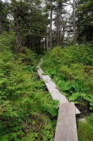 Alaska Landscapes images Alaska landscapes alaska wilderness charters juneau alaska jpg