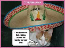 Mexican Sombrero Meme - cat meme blackcatloner