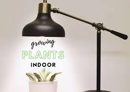 what is the best lighting for growing indoor the 7 best light for growing plants indoors 2020 reviews