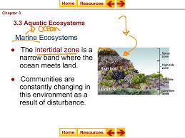 transitional aquatic ecosystems science environment ecology