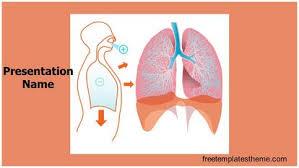 powerpoint design lungs free lungs powerpoint template freetemplatestheme com