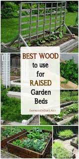 The Best Way To Build by Best Way To Build A Raised Bed Vegetable Garden Gardening Ideas