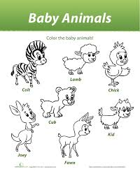 luna and lara baby animals colouring sheet