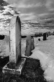 pictures of tombstones row of tombstones in a cemetery stock image image of grave white