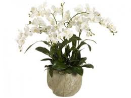 silk orchids silk orchids white phalaenopsis arwf3408 floral home decor