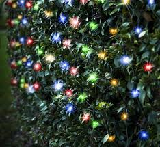 christmas pictures with led lights led net lights led lights christmas led lights upto 70 off