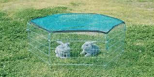 gabbie per conigli nani usate fortesan recinto per conigli con rete cm 60x63 gabbie ed accessori