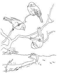 chickadee coloring pages thewealthbuilding