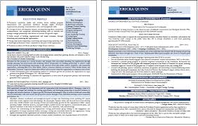 Ceo Resume Example Job Search Strategies Executive Resume Services Part 2
