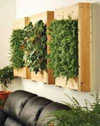 wall planters indoor with timber boxes house wall planters