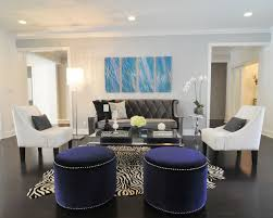 zebra living room decoration ideas