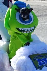 Disney Halloween Costumes Dogs Charlies Halloween Costume Sully Fur Friends