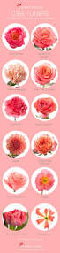 best 25 coral roses ideas on pinterest coral wedding bouquets