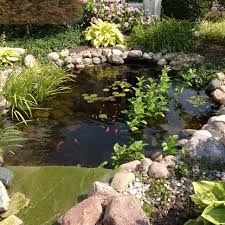 15 best pond ideas images on pinterest pond ideas backyard