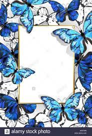 luxury gold butterflies on blue stock photos luxury gold