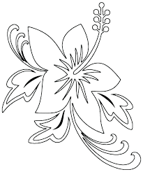 coloring pictures of hibiscus flowers printable hibiscus flower coloring pages outline stem pi osakawan info